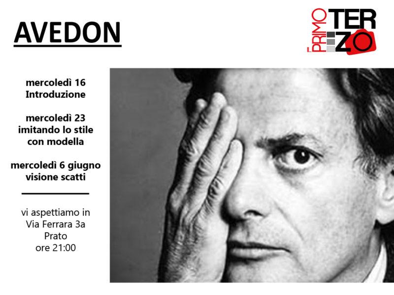 Il primo terzo - Richard Avedon